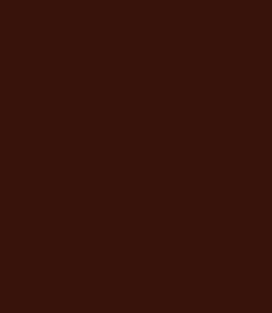 """Горький шоколад""  RAL 8017"