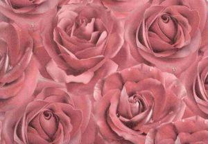 """""""Розовые розы"""" глянец фотодизайн"""